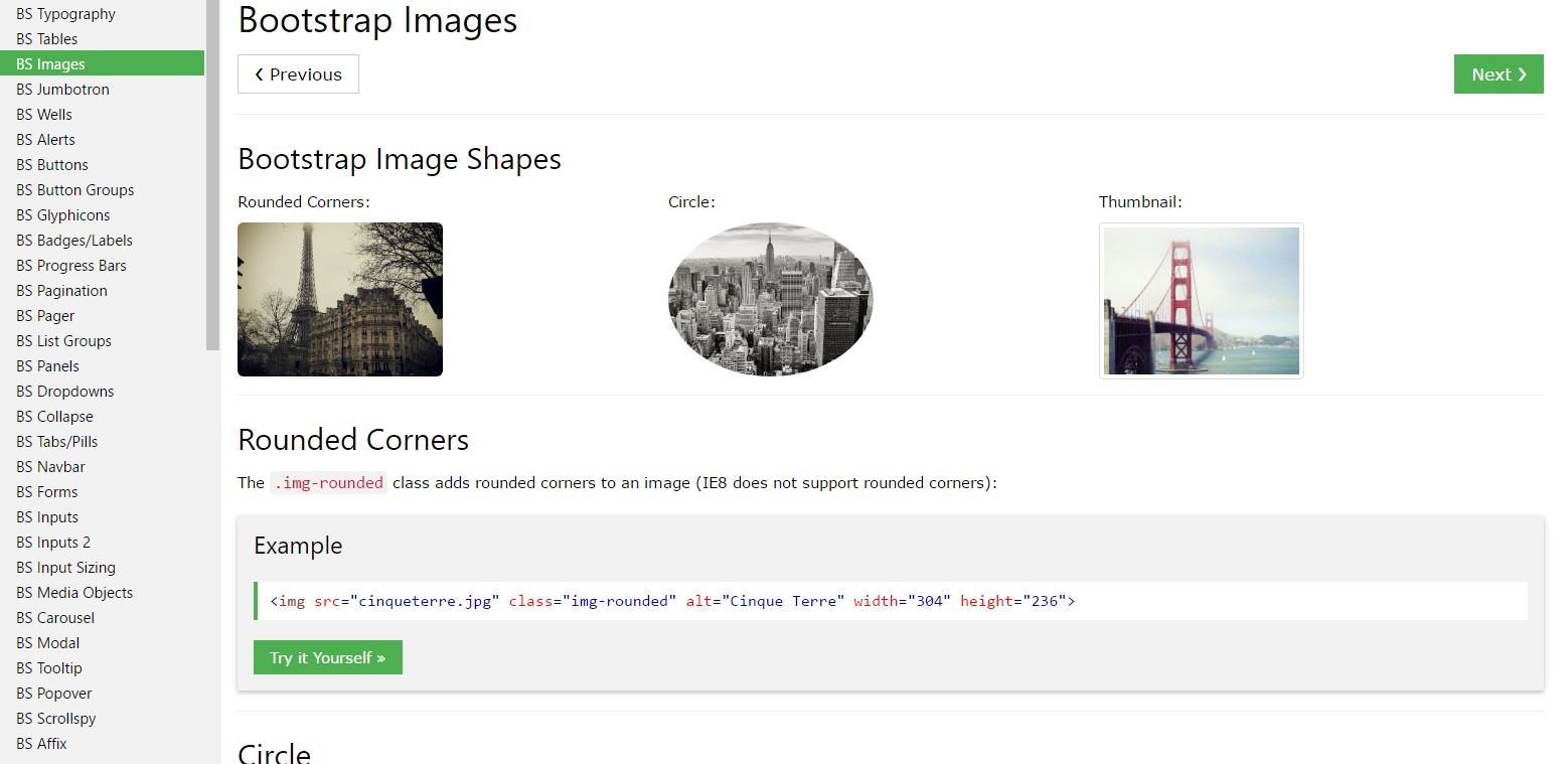 Bootstrap image  short training