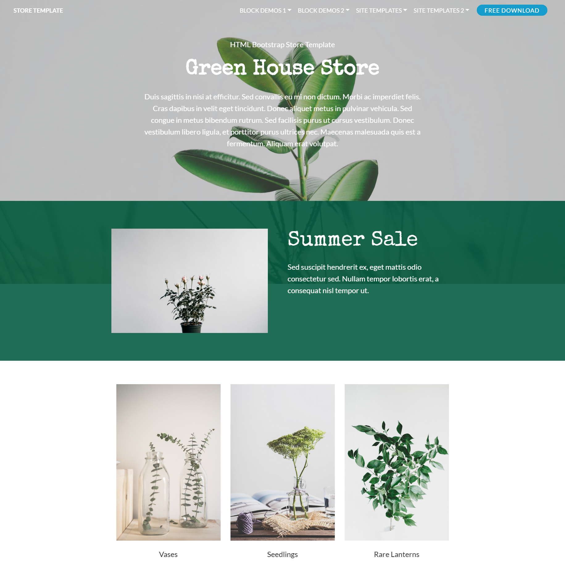 Responsive Bootstrap Store Themes