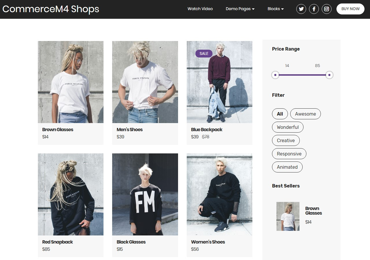 Shops Template for eCommerce Website