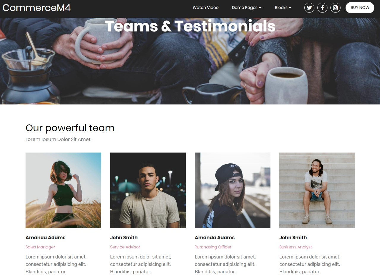 Teams and Testimonials Template for eCommerce Website